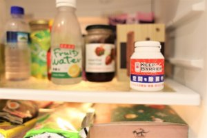 KB GEL 抗菌除臭 凝膠 空間防護 冰箱